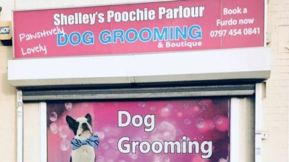 shelley's poochie parlour
